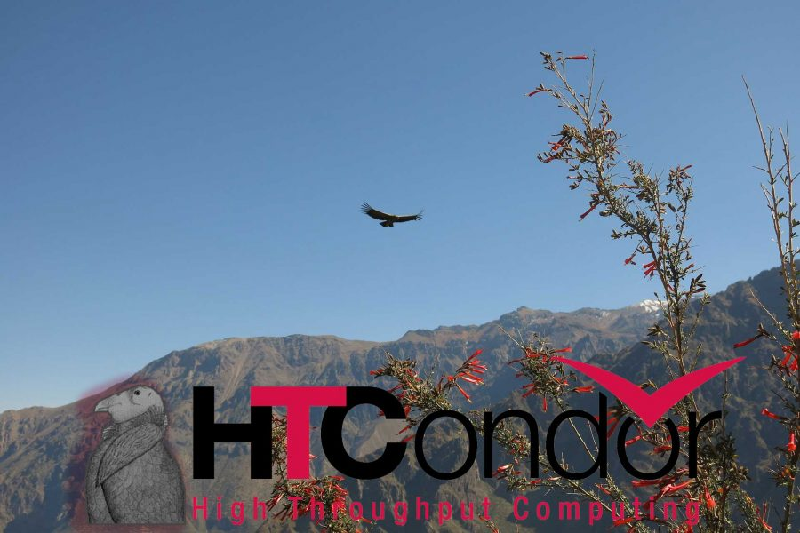 HTCondor - background image from pixabay.com.
