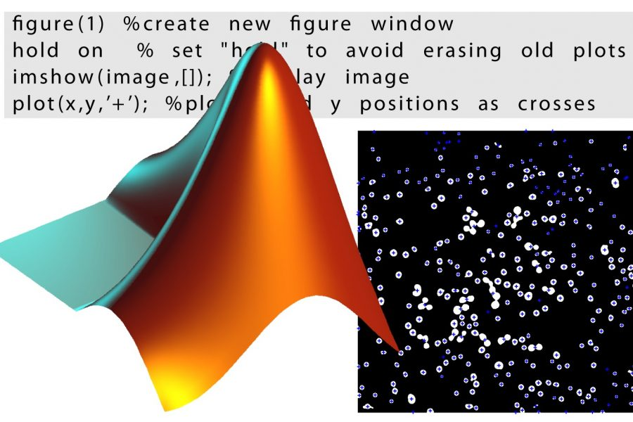 Matlab logo in composite image from Open Access Textbook 'Bioimage Data Analysis', Edited by Kota Miura